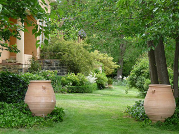 Grecian Urn Pitharoi in a country garden, NSW